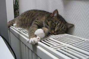 Heizkörper Reflexionsfolie für wohlige Wärme